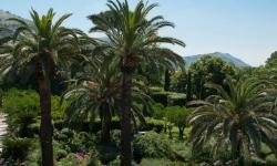 Giardini di Palazzo Cocozza di Montanara