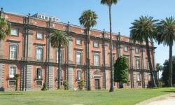 Museo e Real Bosco di Capodimonte-Napoli