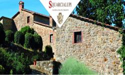 Palazzo Squarcialupi -  Agriturismo  (Castellina in Chianti - SI)