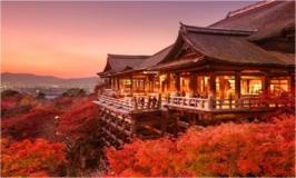 Giappone - Meraviglie Giapponesi Tour