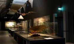 Museo Nazionale Scienza e Tecnologia Leonardo da Vinci: Accesso Rapido